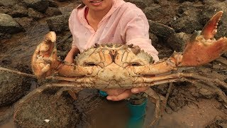 Catch the blue crab to catch the explosion! To be rich! [Xiangzi catches the sea]