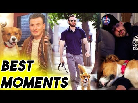 Chris Evans Being Adorable With His Dog Dodger for 5 Minutes Straight  Funny Moments