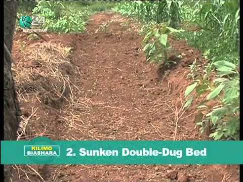 Kilimo Biashara: Kilimo Hai 'Organic farming'