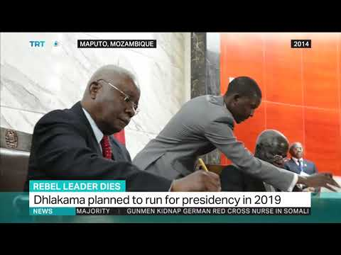 Mozambique's Afonso Dhlakama Dies: Interview with Jermaine Sanwoolu