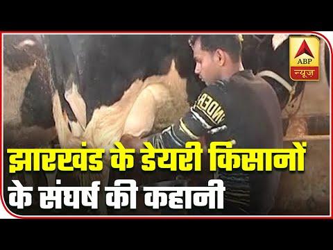 Story Of Jharkhand Dairy Farmers Suffering Post Coronavirus Outbreak | ABP News