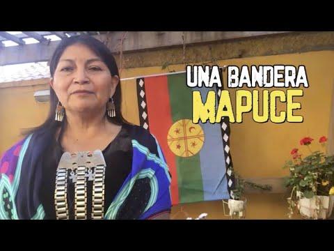 Creación de la Bandera Mapuche (Wenu Foye) hace 28 años, relato de Elisa Loncon