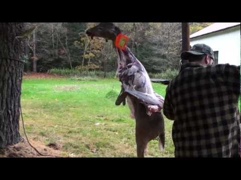 How to Skin a Deer with a Golf Ball and Pickup Truck and Quarter a Deer
