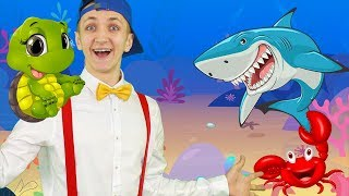 Ocean Animal Song For Kids - The Funny Nursery Rhymes