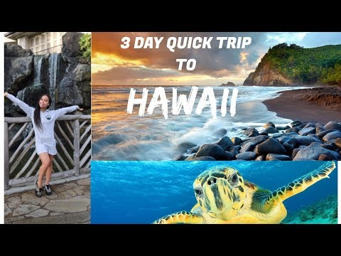 3 DAY QUICK TRIP TO HAWAII : DAY 3  VLOG 19  ASIA MONET RAY