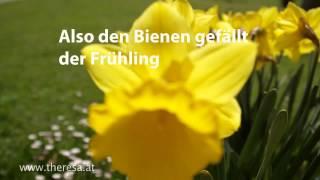 Meine Theresa - Der Frühling kommt /Spring is coming