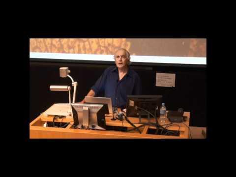Emeritus Professor Stuart Rees