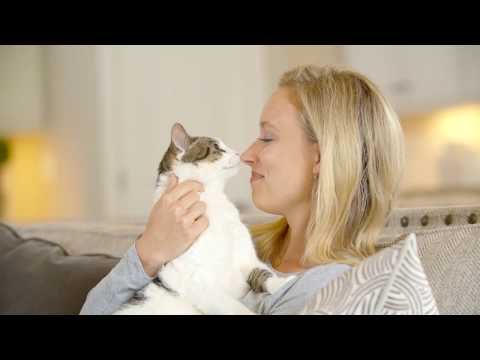 PetSafe® Extending ScoopFree® Line With The Addition of ScoopFree® Smart Self-Cleaning Litter Box