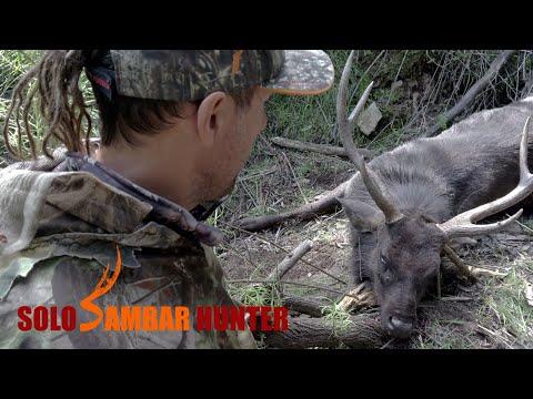 HUNTING BIG SAMBAR STAGS IN THE RUT  – EP07 – SOLO SAMBAR HUNTER