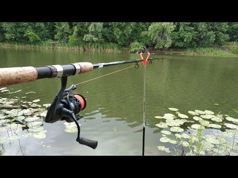 Рыбалка с фидером на реке. Катушка Piscifun Carbon X