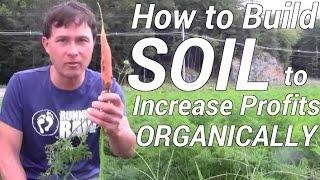 How to Best Build Soil to Increase Profit When Organic Farming
