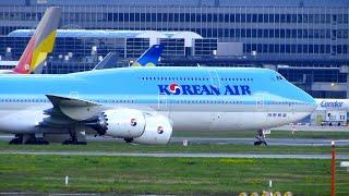 MAJESTIC Korean Air Boeing 747-8i Landing and Taxi at Frankfurt Airport | HL7637
