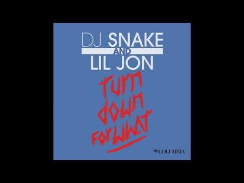 Turn Down For What [Acapella [Studio] - DJ Snake, Lil Jon