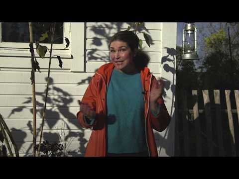 Hemma hos Jessica Lyon v 43 Höstsådder rådjursknep och foraging Självhushåll i en villaträdgård
