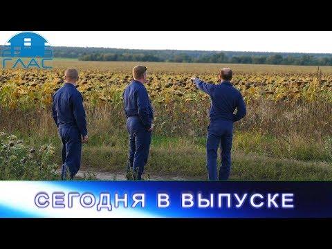 Борисоглебск Сегодня 17 сентября 2017 года