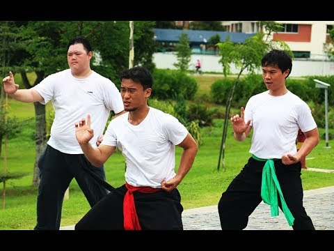 Singapore Chinese Roots: Rediscovering Kung Fu