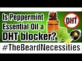Is Peppermint Essential Oil A DHT Blocker? | #TheBeardnecessities | Ep 12