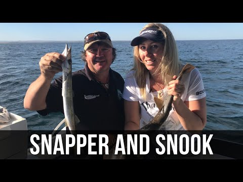 Snapper And Snook (Season 5 Ep 09)
