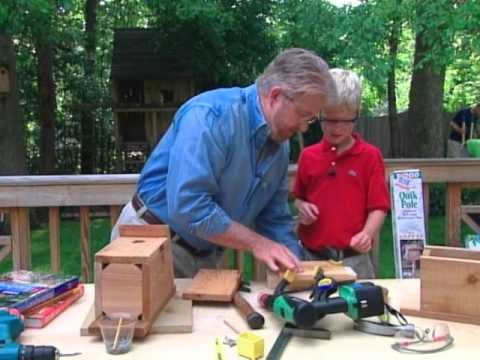 How to Make a Bird Sanctuary in the Backyard