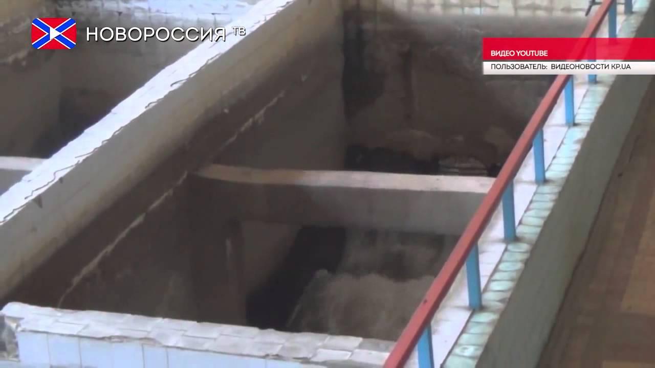download адвокатская деятельность 8000 руб 0