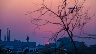 3月になりました。また3月11日がきます。東日本大震災から5年です。 阪...