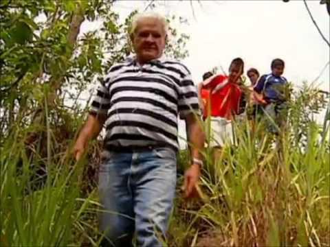 Globo Repórter: Avô salva o atacado por cobra de cinco metros com ...