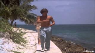 Miami Vice - First Season (1984-1985) - (Calderone