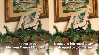 Canon EOS 60D Digital SLR media tests