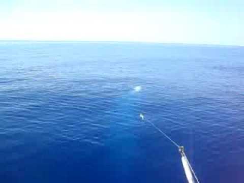 Deep sea fishing outside of lutro in rethymnon crete for Elias v fishing