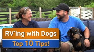 RV Living with dogs - Our Top 10 tips!