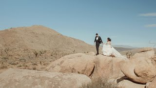 Couple Ditches Wedding Plans and Elopes in Joshua Tree | Gicel + Craig | Joshua Tree Elopement