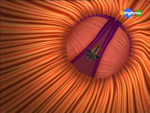 Смотреть онлайн мультфильм приключения адибу