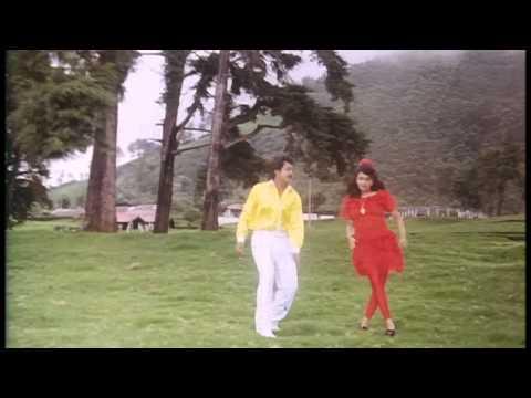Pattukkottai Periyappa Tamil Movie HD Video Songs