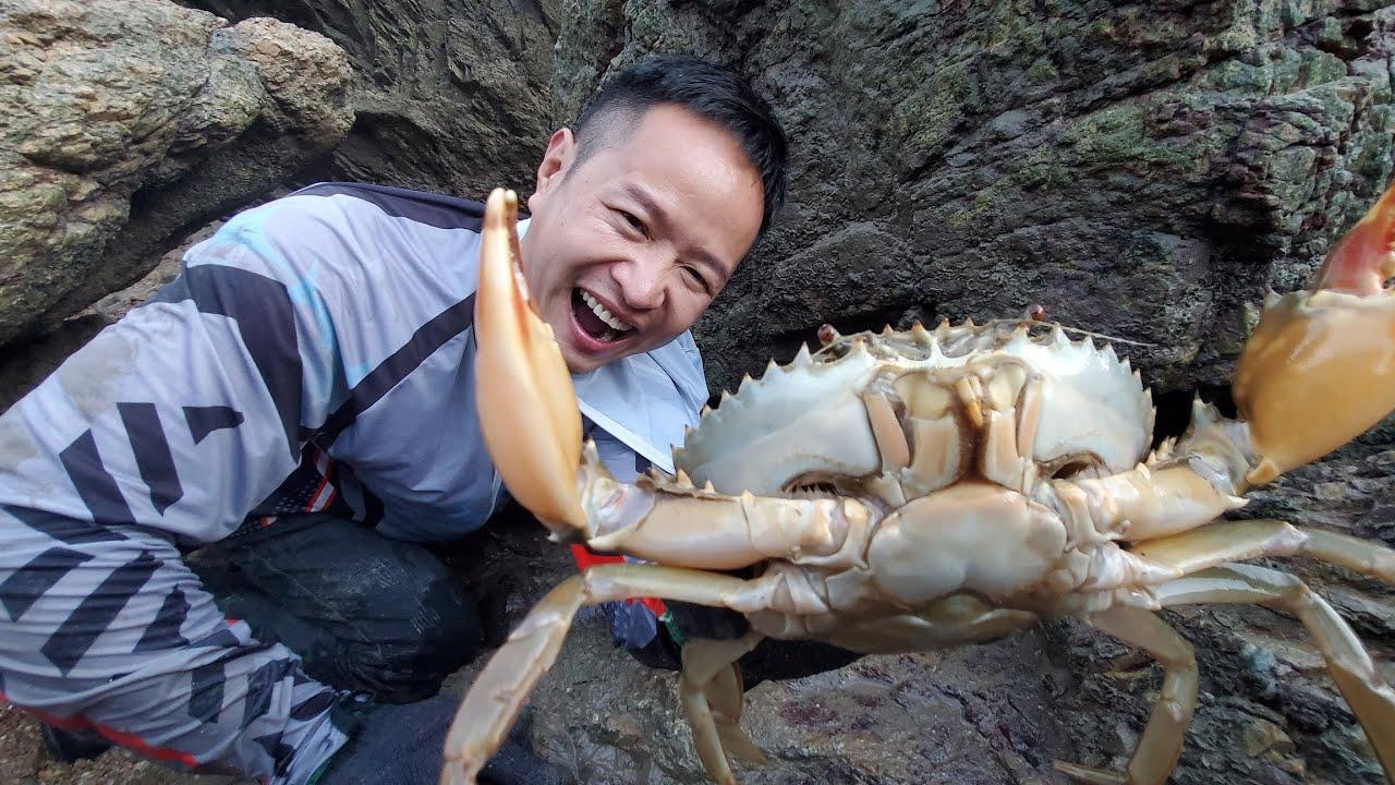 """大石头下一只昂贵的""""黄油蟹""""太惊艳了,馋得大伙直流口水"""