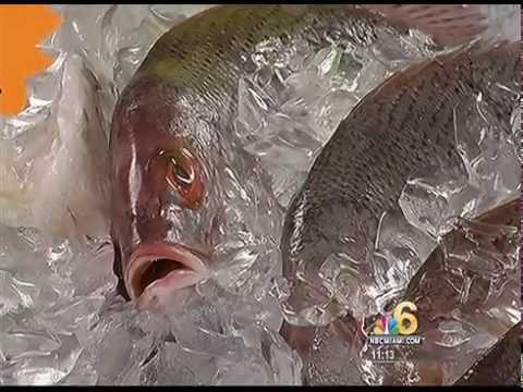 Norway Farmed Salmon