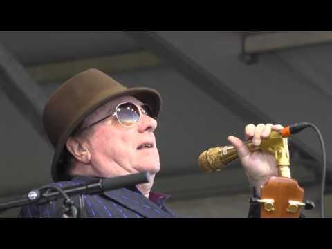 Van Morrison Moondance 2016 New Orleans Jazz Festival