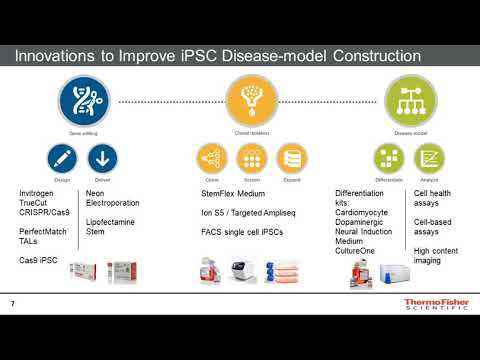 Improvements in building in vitro pluripotent stem cell-derived disease models