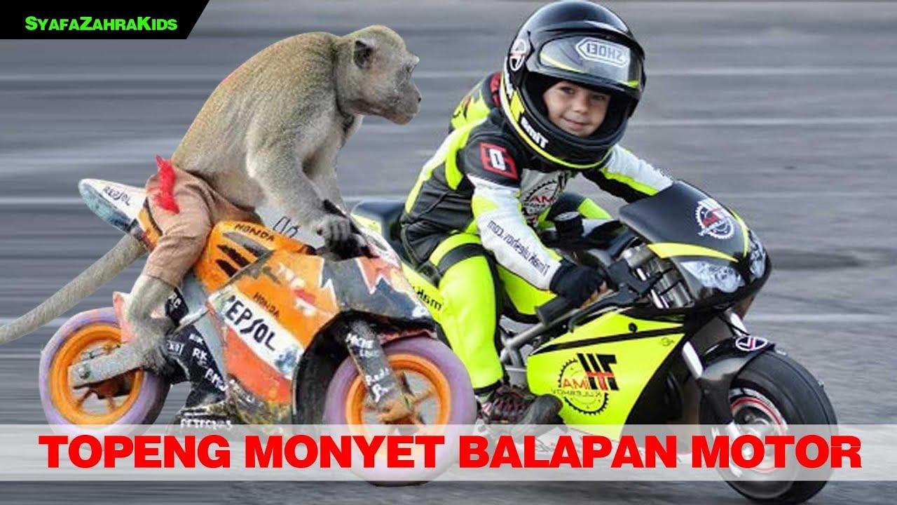 Topeng Monyet Lucu Monyet Balapan Motor Funny Monkey Youtube