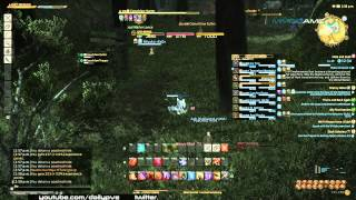 Final Fantasy XIV A Realm Reborn FATEs Farming Guide