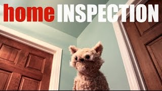 This Cat is NED - EP26 – Home Inspection