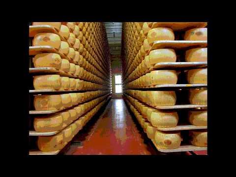 real parmesan cheese reviews