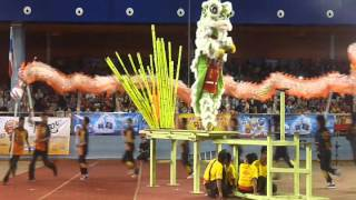 YICK NAM LION DANCE TEAM E & TEAM A DRAGON - LIKAS STADIUM (18JAN 2014)