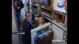Ариф Мирзоев пять лет назад открыл кроличью ферму