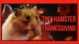 Repeat youtube video A Tiny Hamster Thanksgiving (Ep. 4)