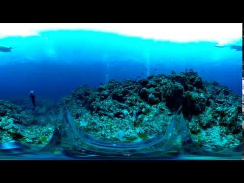 RICOH THETA V - 4K & 360° Spatial Audio Sample (Underwater ...