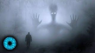 Rätsel um Aliens: Wissen Menschen zu wenig um außerirdisches Leben zu entdecken?
