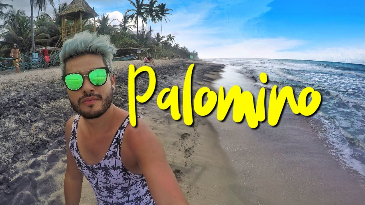 PALOMINO - LA GUAJIRA
