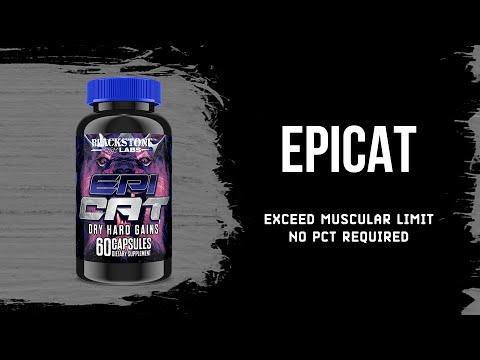 Epicat | Epic Growth