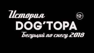 Трейлер История DOG'ТОРА. Бегущий по снегу 2018.