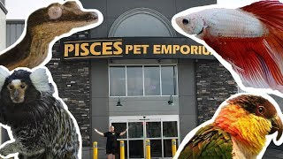 WORLDS LARGEST PET STORE TOUR (PISCES PET EMPORIUM)!!